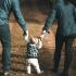 Ortanca Çocuk Sendromu